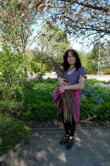Debbie collecting willow wands